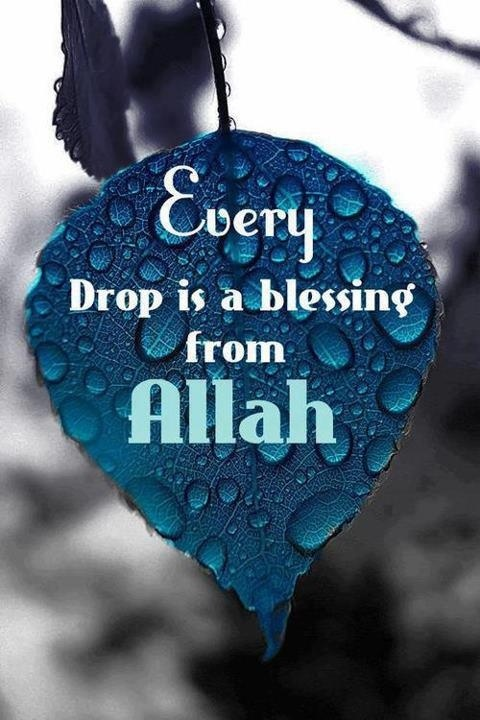 Every drop is a blessing from Allah Subhanahu wa Ta'ala.