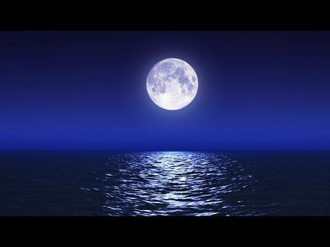 Sleep Music With Ocean and Jungle Sounds – Relaxing Blue Screen Scene – Ocean and Full Moon - YouTube