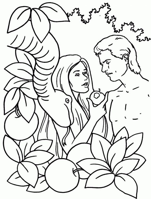 26 best Adán y Eva images on Pinterest   Sunday school, Catechism ...