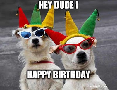 Dog Birthday Meme | dog birthday meme