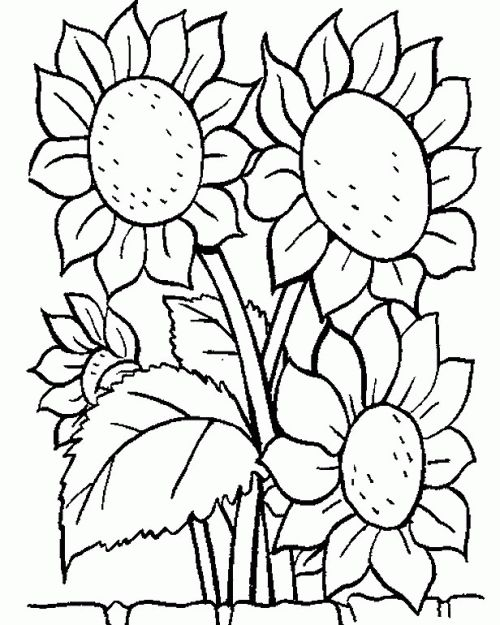 53 best coloring pages for adult images on Pinterest | Coloring ...