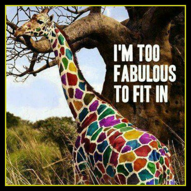 Go on - be fabulous