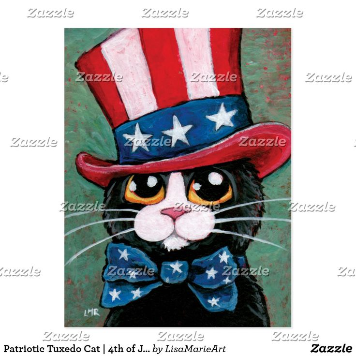 Patriotic Tuxedo Cat | 4th of July Postcard  #cat #cute #postcard