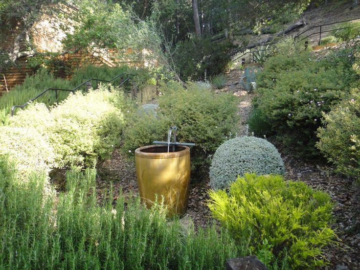 Paisajismo en zona arida de California con plantas nativas, poca irrigacion y bajo costo de mantenimiento. Usen el concepto en donde viven