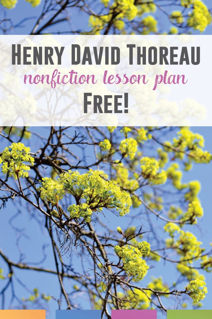 Teaching Transcendentalism or Henry David Thoreau? Add this free nonfiction piece to American Literature lesson plans.