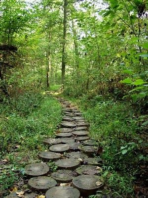 I saw this picture and did not think much about it at the time, but I have been imagining this path in my future backyard ever since.