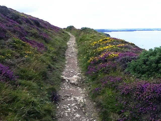 Hiking Englands South West Coast Path