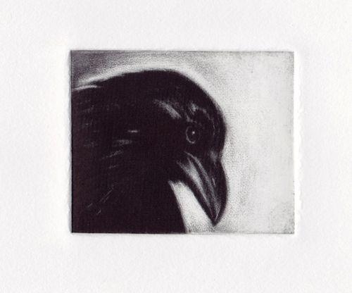 Noir by GEORGIA PESKETT
