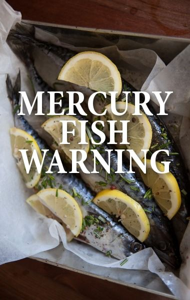 How does mercury get in our diet risks of eating too much for Why do fish have mercury