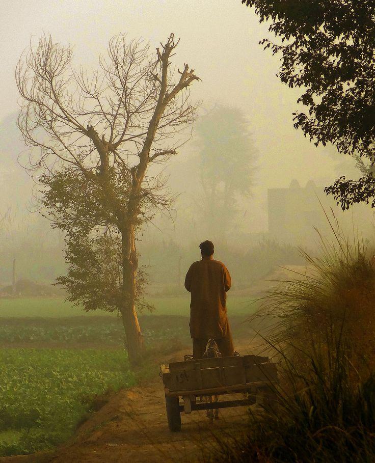 Village scence punjab, Pakistan
