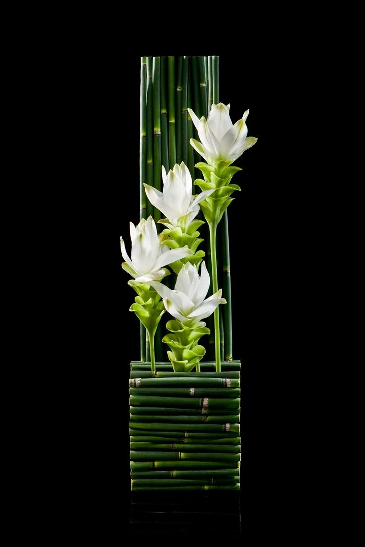 Ikebana Japanese flower arrangement: