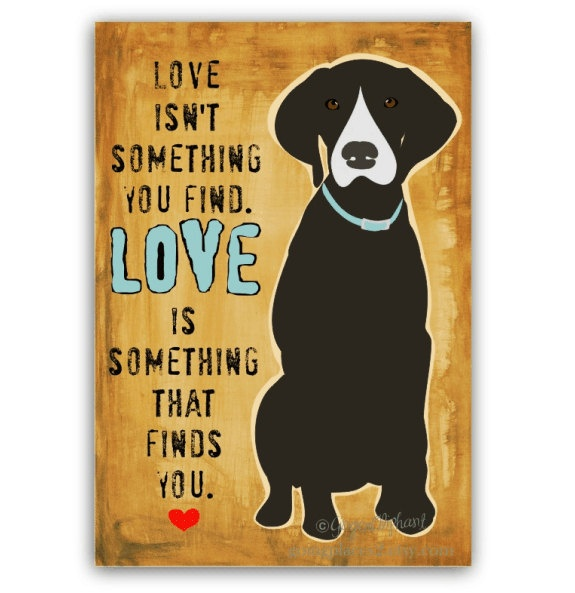 247 best Paw prints images on Pinterest | Doggies, Pets and Artists