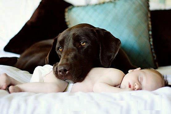 Mamá, vete tranquila que y0 le cuido :)