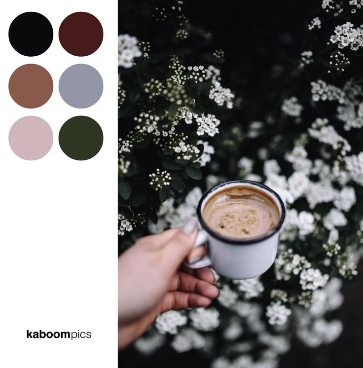 MORNING COFFEE OUTDOORS IN THE GARDEN  // Free Stock Photos & Color Palettes