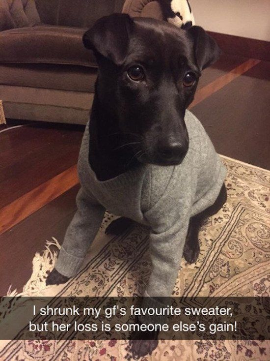 I really didn't think it wa possible to make a sweater that small.  Was she already an XXS??