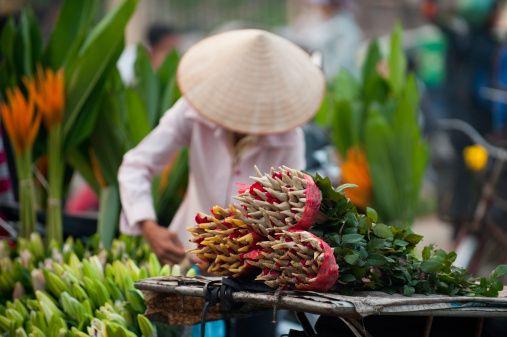 Immergersi nei mercati di fiori di tutto il mondo: è primavera! #Hanoi #Vietnam Immergersi nei mercati di fiori di tutto il mondo: è primavera! #India #flowersmarket #mercatodeifiori #people #persone #market #mercato #colour #colori #fiori #flowers #fiore #flower #hand #work #job #lavoro #manuale #spring #primavera #world #flowersmarketoftheworld