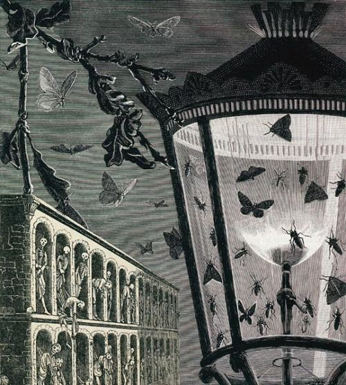 amy-addams:  I am always fascinated by the works of Max Ernst. All the moths - so beautiful. And the skeletons in the archways.