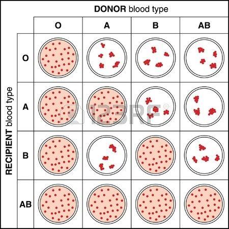 Testing blood group
