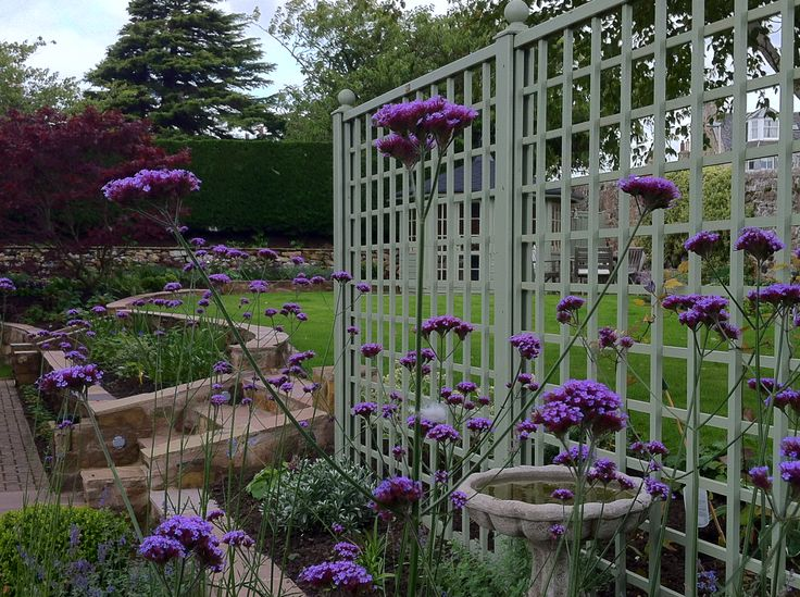 1000 images about gardens by goose green design on for Garden design east lothian