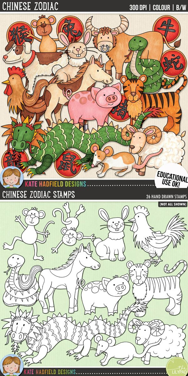 Chinese Zodiac / lunar calendar clip art for teachers! | Contains coloured clipart and black and white outlines at 300 dpi for highest quality printing for your resources and projects! | Hand-drawn clip art by Kate Hadfield Designs at Teachers Pay Teachers