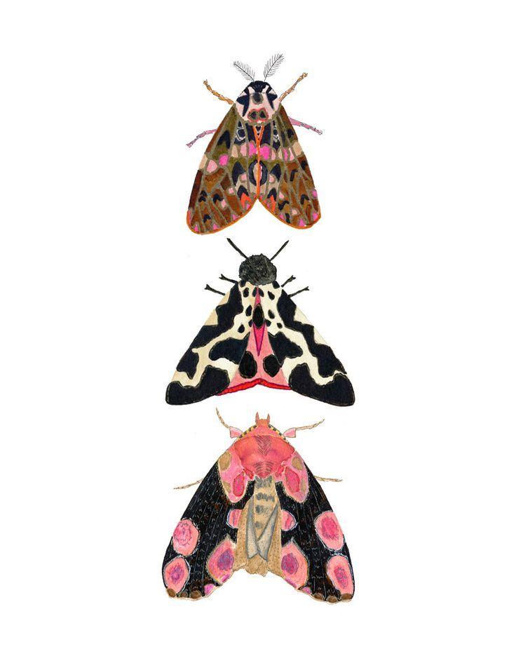 Watercolor art print. Pink moth illustration. Charming service …