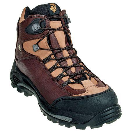 Golden retriever boots website