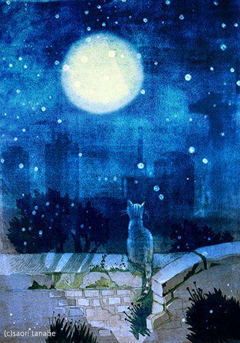 月を見ている猫