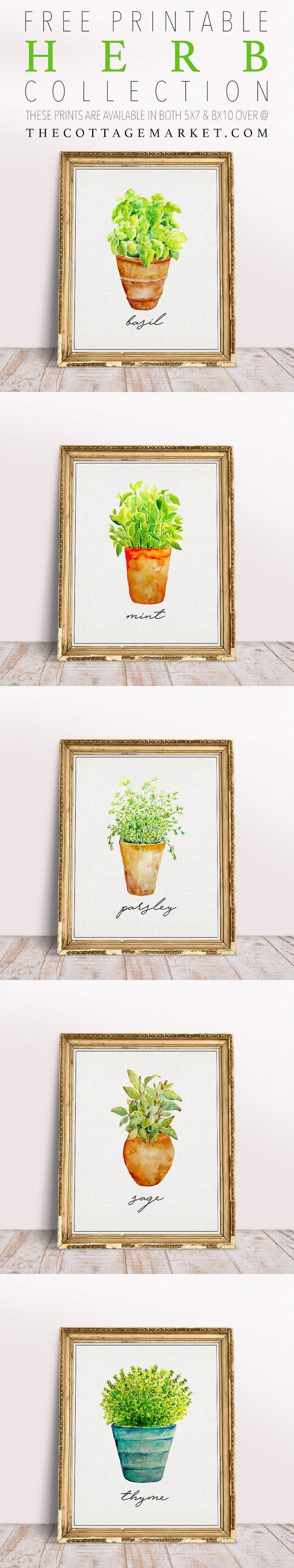 Free Printable Herb Collection This FIVE Piece Herb Collection is just waiting to hang on your wall!