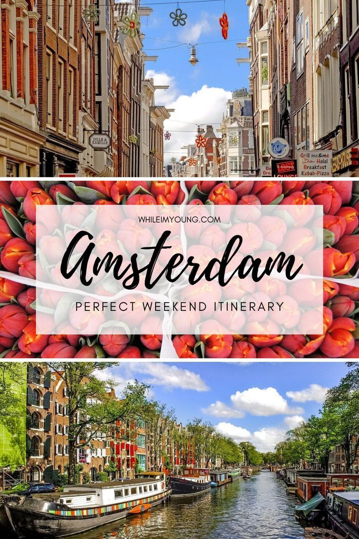 Amsterdam In A Weekend The Perfect Itinerary While I M Young In 2020 Amsterdam Travel Guide Travel Fun Europe Travel