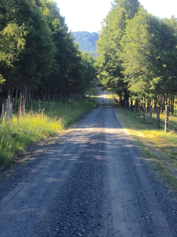 Camino a Termas de Liucura , Pucon, Chile.