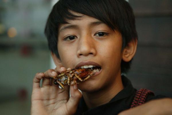 Cambodja - Pow (14) eet een reuzenkever. Beetje citroengras en knoflook er bij en dan vindt hij het beestje best lekker.   © Victoruro