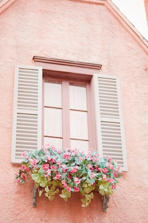 white shutters against pale pink background with pink flowers in window box