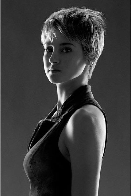 Shailene Woodley                                                                                                                                                                                 More