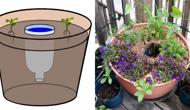 Letní návod na praktickou zásobárnu vody do květináčů z PET lahve
