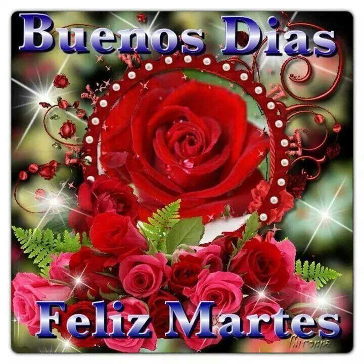 1000+ images about Feliz tarde on Pinterest | Get Well ...