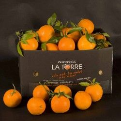 http://www.naranjaslatorre.com/ - #NaranjasOnline   En #Naranjas #LaTorre disponemos de las #mejores #naranjas y #mandarinas de la #Comunidad #Valenciana, como la #clementina #Nulera, originaria de aquí, #Burriana. En el año 1953 nació por mutación genética #natural esta variedad única y sin competencia caracterizada por su #sabrosa pulpa. #naranjas, #citricos, #fruta, #fruteria, #mermelada