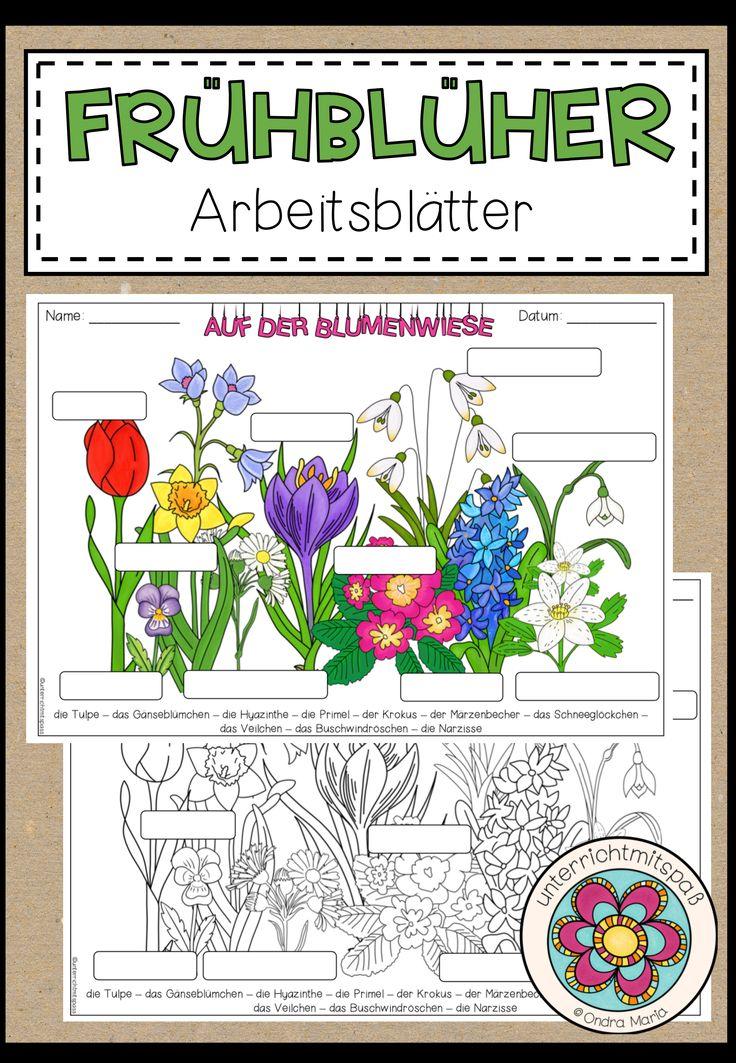 Frühblüher Arbeitsblätter Download bei Earth day