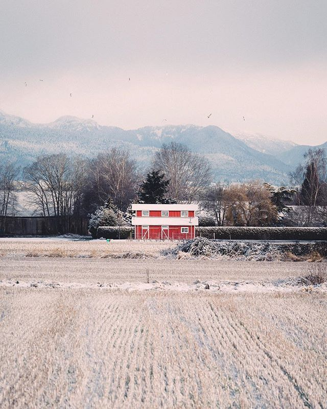 The Red Barn caught my eye while I was driving in South Richmond along the Fraser River. I was wondering if I should turn back and take the shot. Which I finally did and seeing now; quite happy with it.