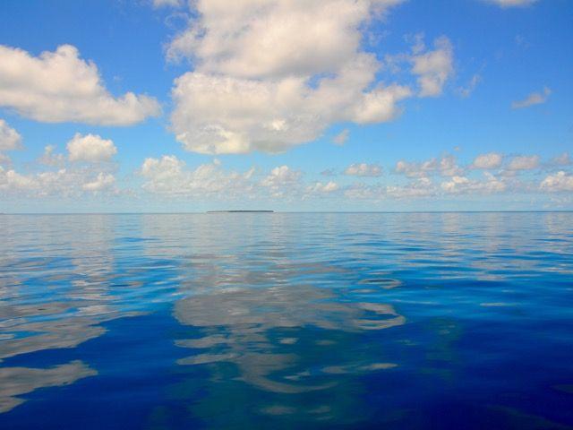 Pilgrim Sailing - Sailing the Queensland Coast North West Island, Great Barrier Reef, Queensland