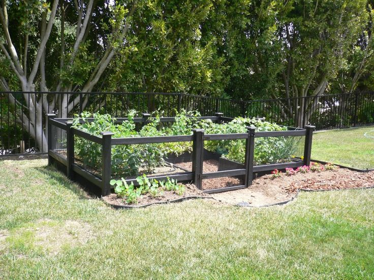 Enchanting Garden Fence Ideas For Vegetable Cool Grow Space With