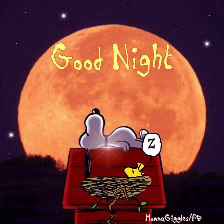 Snoopy - good night