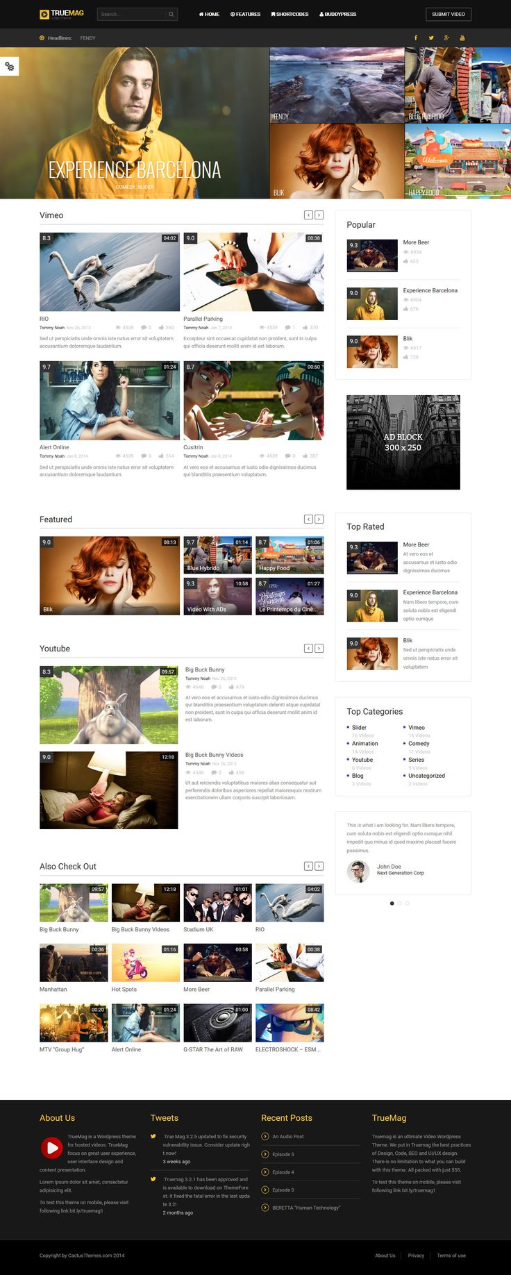 True Mag - Wordpress Theme for Video and Magazine #wordpress Live Preview and Download: http://themeforest.net/item/true-mag-wordpress-theme-for-video-and-magazine/6755267?ref=ksioks