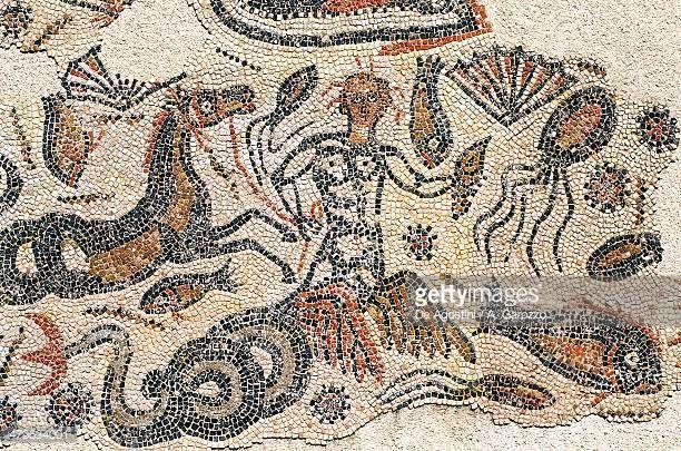 Triton, animals and shells, detail from mosaic of Triton Banasa, Roman city of Volubilis (Unesco World Heritage List, 1997), Morocco, Roman civilization