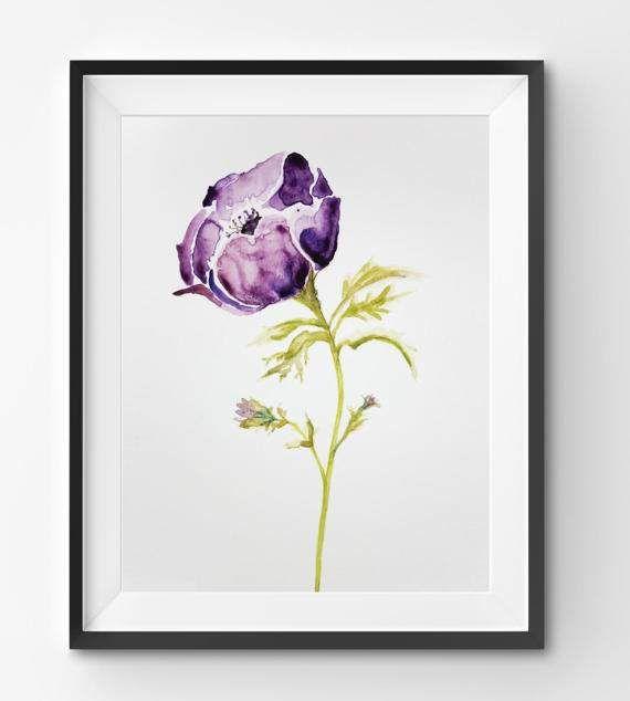 Purple Anemone Illustration watercolor print flower floral