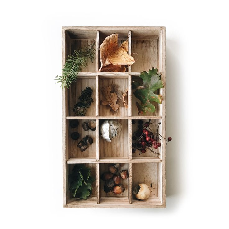 fawn&forest exclusive x Nature Collection Tray