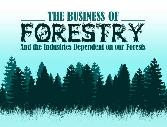 INFOGRAPHIC: The Business of #Forestry | Inhabitat - Sustainable Design Innovation, Eco Architecture, Green Building