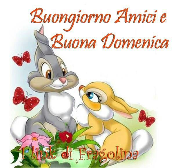 Good morning and happy tuesday pictures photos and images for - 17 Migliori Immagini Su Giorni Della Settimana Su