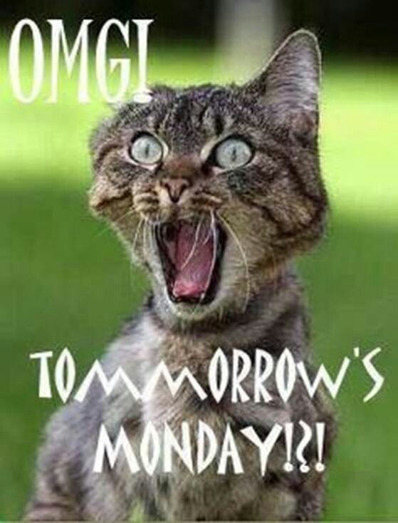 Monday's coming!!