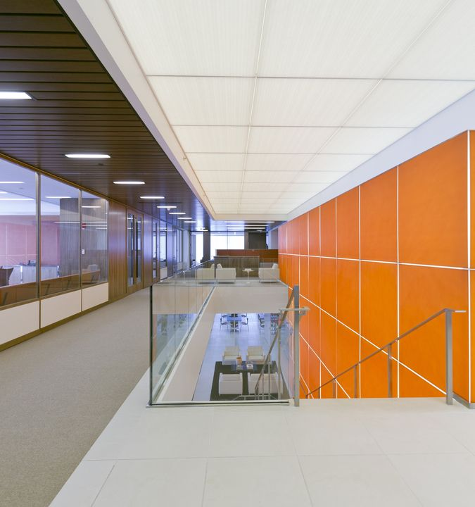 Acoustical Ceilings - Techstyle Translucent Panels from Hunter Douglas Contract