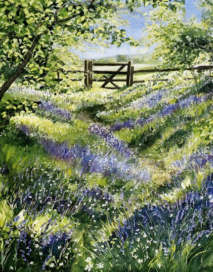 Bluebell Wood - watercolor floralscape by Dorothy Pavey